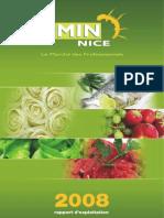 Rapport 2008