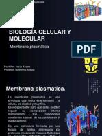 Biología Celular y Molecular(Clase IV Membrana Plasmatica)