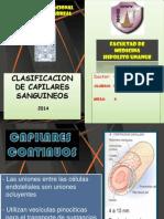 Clasificacion de Capilares