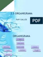 2.5 ORGANIGRAMA