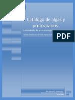 Catálogo Para Protozoarios