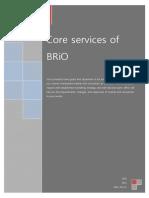 BRiO Services - 2011E