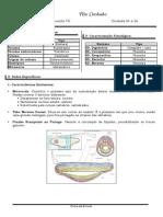 Ficha Estudo - Cordados
