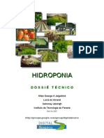 Hidroponia Dossietecnico Ageorgelamaralsjaisingh 110208182824 Phpapp01