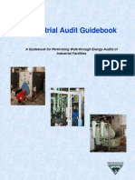Audit Guide