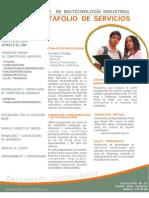 Cbi-portafolio Servicios Julio 2009