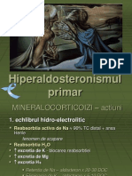 HiperAldo2
