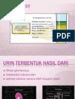 Urinalisis Re