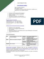 Guia Trabajo de Grado PDF
