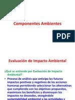 4 SEIA Componentes Amb Proyecto SEIA 2014
