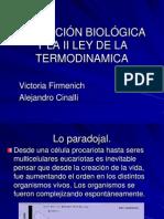 Firmenich_Cinalli