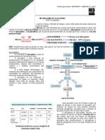 Bioqumicaii01 Metabolismodoglicognio 120627021813 Phpapp02