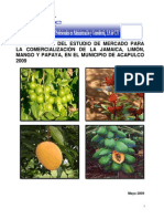 1 Informe Final Estudio Mercado Limon Jamaica Mango Papaya