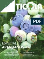 Especial Arandanos 2012 Diciembre