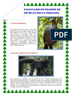 Animales Salvajes en Peligro de Extincion de La Selva Peruana