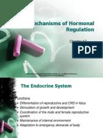 Chapter 017 Hormonal