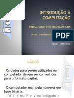 Dados e Softwares