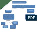 mapa conceptuall bioquimica unidad 1