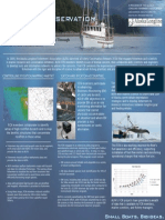 alfa poster pdf