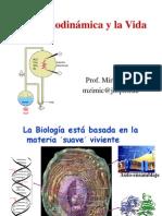 B Termodinamica Bioenergetica Ciencias 2008