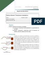 7 Fenómenos Ondulatorios (Física II)