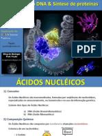 Ácidos Nucleicos - Duplicação Do DNA e Síntese Protéica