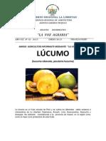 Voz Agraria Nª 02_cultivo de Lucumo_2013