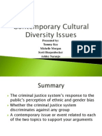 Final Draft of Cultural Diversity Issue Group B