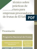 Manual Técnico Sobre Buenas Prácticas de Manufactura Para