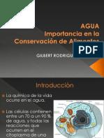 AGUA 2013.pdf