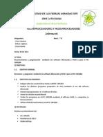 1 Informe Micros