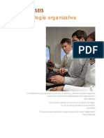 06_Tecnologia_organizativa