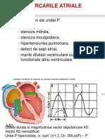 1.EKG 2010-2011 III