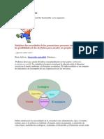 Acme 2014 Desarrollo Sustentable