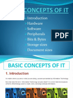 1 Basic Concepts in It