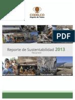 Resumen Reporte 2013 Uv