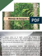 Manejo de Bosques Nativos