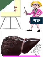 Definisi Dan Epidemiologi Sirosis Hati