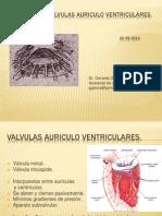 Patología de Válvulas Auriculo Ventriculares