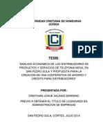 Tesis Cristian Salinas