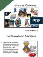 contaminantes quimicos 1
