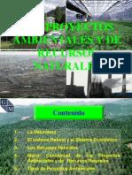 Teoria Proyectos Ambientales (T)