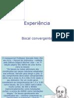 bocal_convergente_22008