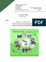 Collage 2 Migración
