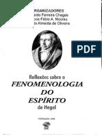 Reflexões Sobre a Fenomenologia Do Espírito de Hegel
