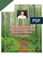 Los Vegetales Que Curan Cancer