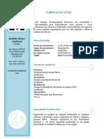 Curriculum V2.pdf