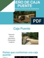 Diseño de Caja Puente