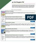 baja-bugs-and-buggies-pdf.pdf