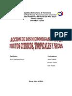 ACCION DE LOS MICROORGANISMOS EN LOS CITRICOS.docx